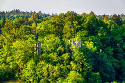 Burg Neckarburg