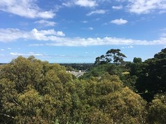 View looking south from Beckett Park Tower, Balwyn