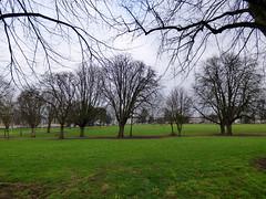 Northampton 006: Beckett's Park