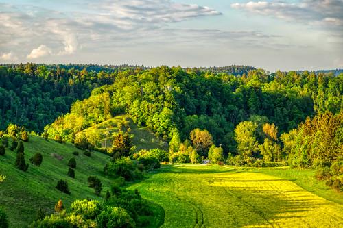 View towards the Neckarburg