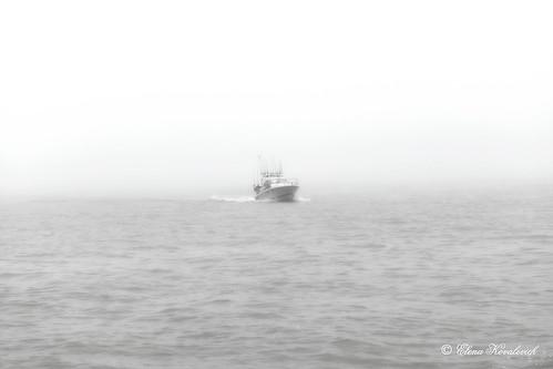Fog over Lake Michigan