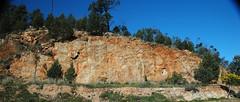 ABC Range Quartzite (Neoproterozoic; Pichi Richi Pass railroad cut, South Flinders Ranges, South Australia) 3