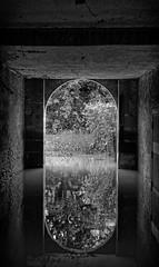 Symétrie inondée