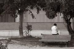 014348 - Alcalá de Henares
