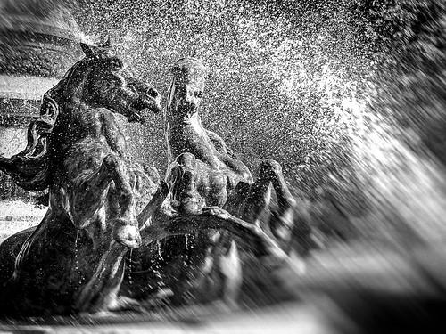 Horses in the Fontaine de l'Observatoire