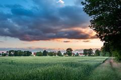 Sonnenuntergang in Wiener Neustadt | Sunset in Wiener Neustadt