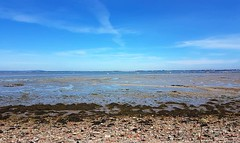 View of Langstone Harbour 7
