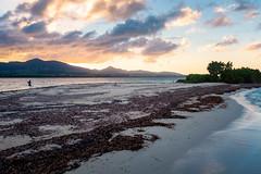 L'îlet Caret, Grand Cul-de-sac marin, Guadeloupe