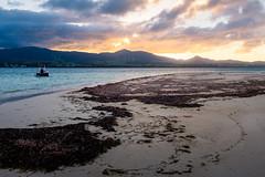 L'îlet Caret, Grand Cul-de-sac marin, Guadeloupe (2/3)