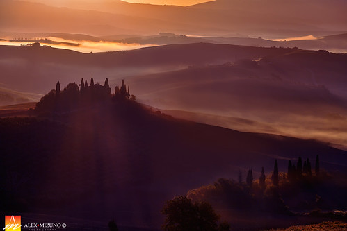 Morning Mist of Toscana
