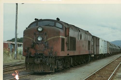 Df 1302 at Tauranga