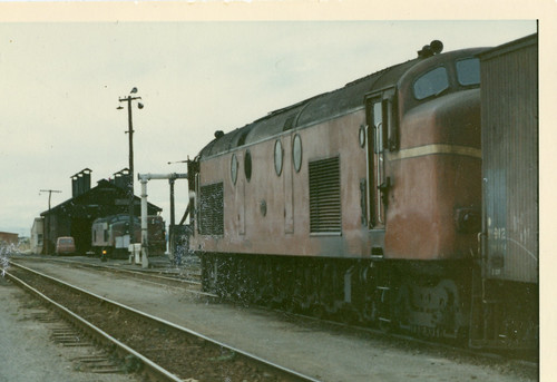 Df 1302 at Tauranga with Df and Db.