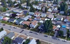 Tiny Model of Casey's House