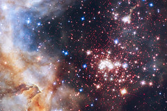 "Hubble finds that ""distance"" from the brightest stars is key preserving primordial discs"