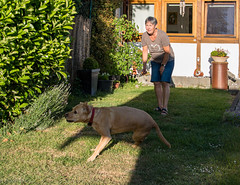 Sam, spaß im Garten