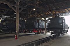 luzna_museum_3_engines_inside_roundhouse_2017-06-25_18