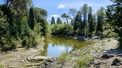 Parco di Galceti - Prato