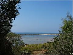 Cacelha Velha (Portugal)