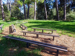 Benches in Semi-Circle