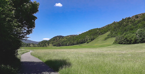 Piste cyclable en vallée de la Thur