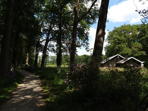 Landgoed Kasteel Hackfort Vorden 30-05-2020