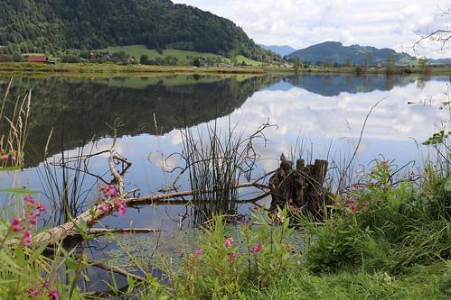 Moor Lake