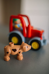 Closeup of pig toy indoors. Agriculture concept.