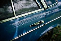 Rainddrops on car door closeup.
