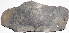 Micritic limestone (Fork Tree Limestone, Lower Cambrian; Old Sellicks Hill Road, Fleurieu Peninsula, South Australia) 1