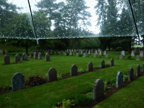 Cemetery in rain