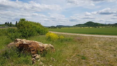 Blick zum Regenstein und zur Heimburg