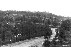 View of the Toowong Cemetery Brisbane ca 1895