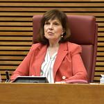 1-6-20 Comissió especial d'estudi per a la Reconstrucció