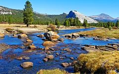 Tuolumne Meadows Tranquility, Yosemite NP 2019