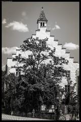 Hirschling Heritage