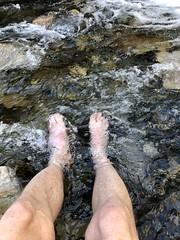 Happy Feet In Utah