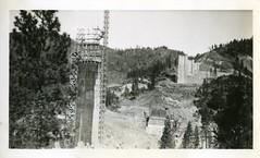 [CALIFORNIA-A-0201] Shasta Dam