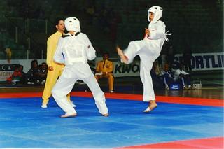 1993 TWG Sports Taekwondo 005