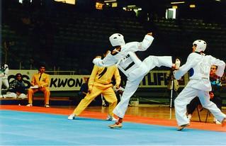 1993 TWG Sports Taekwondo 002
