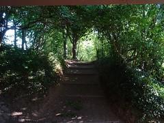 A stairway, in Devon