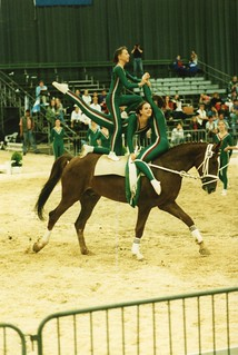 1993 TWG Sports Vaulting 03
