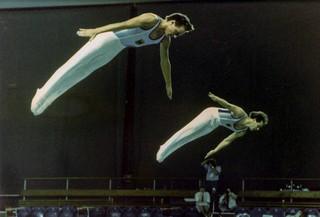 1985 TWG Sports Trampoline