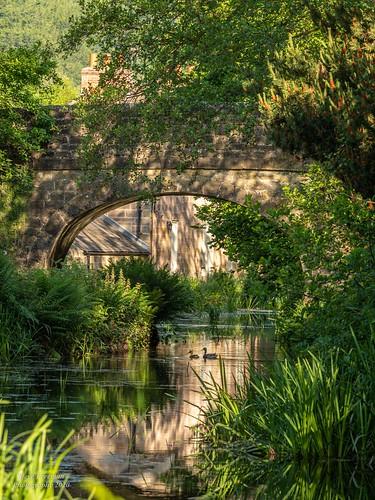 Cromford Canal - Derbyshire 6020088
