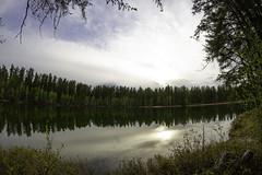 Airport Lake