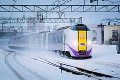 JR Hokkaido KIHA261 Series_ST-1111