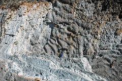 Rippled sandstone (Parachilna Formation, Lower Cambrian; Three Sisters Range, South Australia) 2