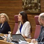 Comissió d'Educació i Cultura