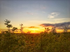Gentleshaw Common sunset, Burntwood, England