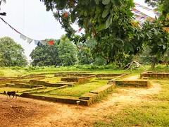 Tilaurakot, Lumbini, Nepal, 尼泊尔 - holy site