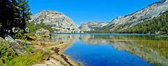 Tenaya Lake Reflections, Yosemite NP 2019